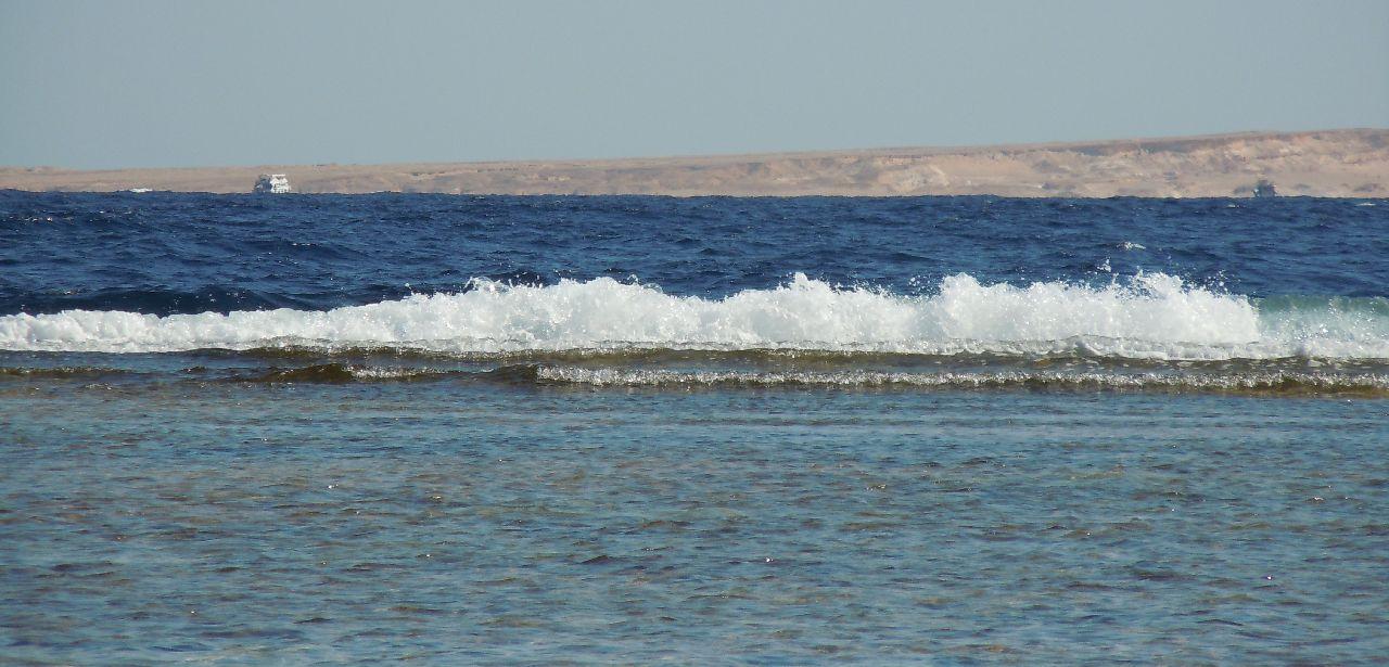 Marea Rosie...bicolora