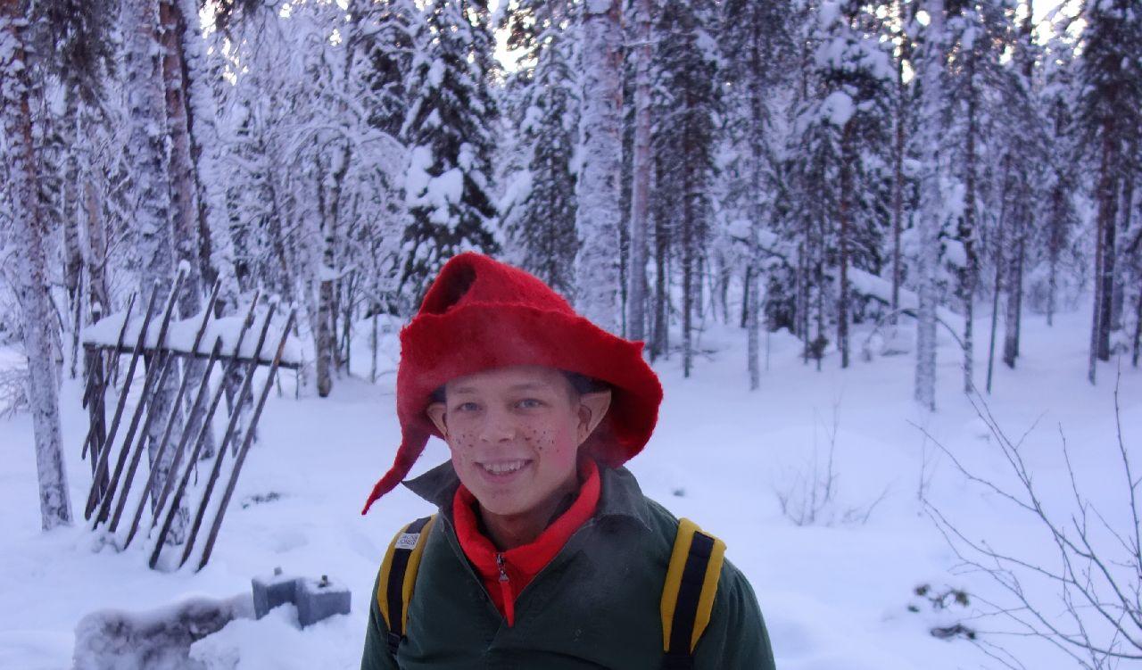 Elful lui Mos Craciun