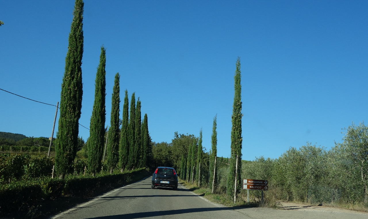 Instantaneu de pe traseul prin Chianti