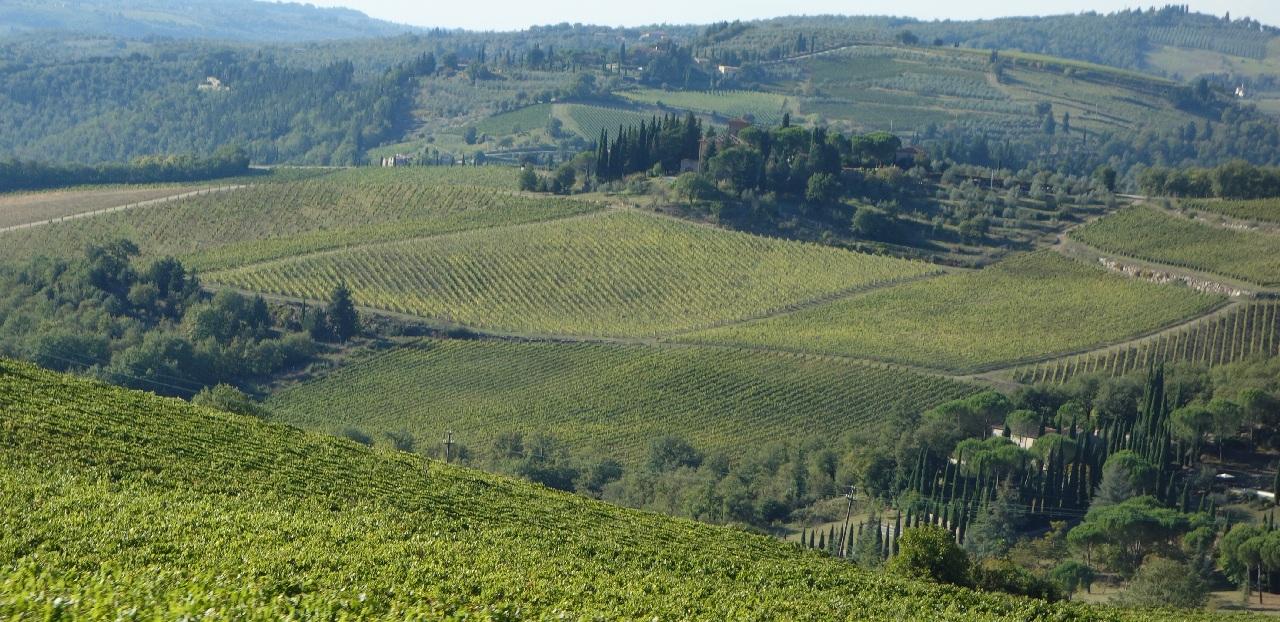 Colindand Toscana rurala