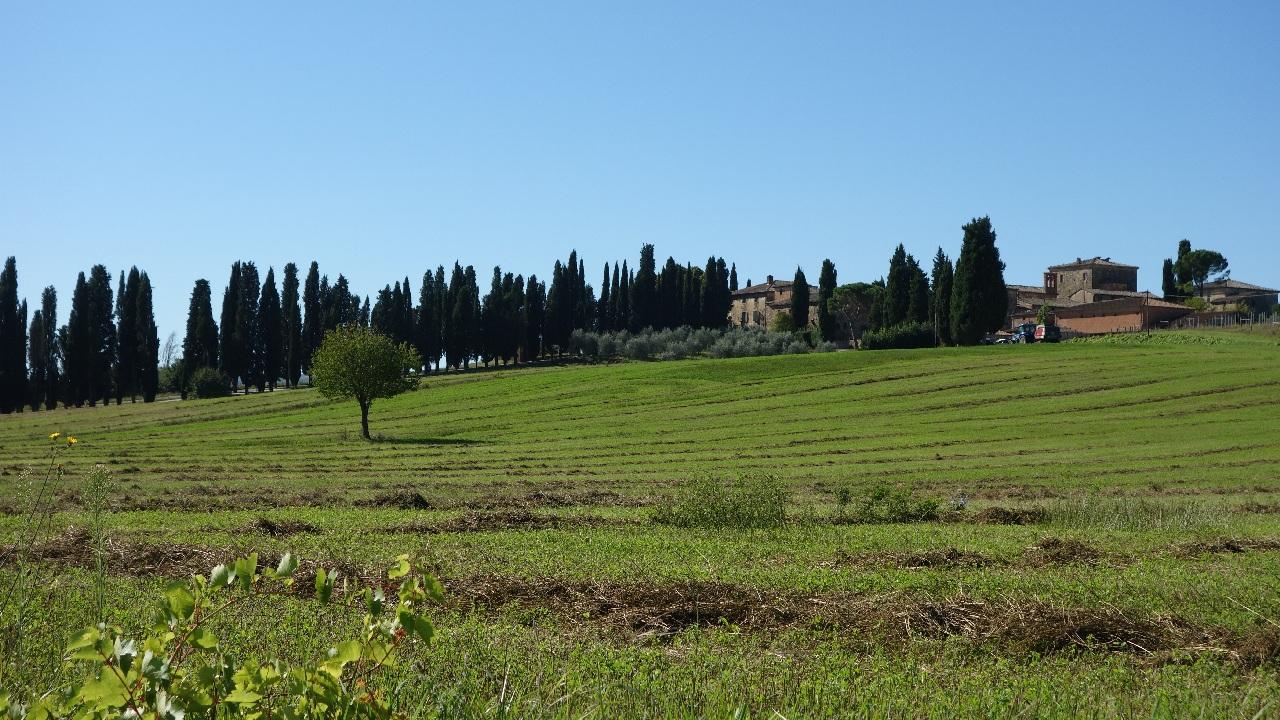 Toscana rurala