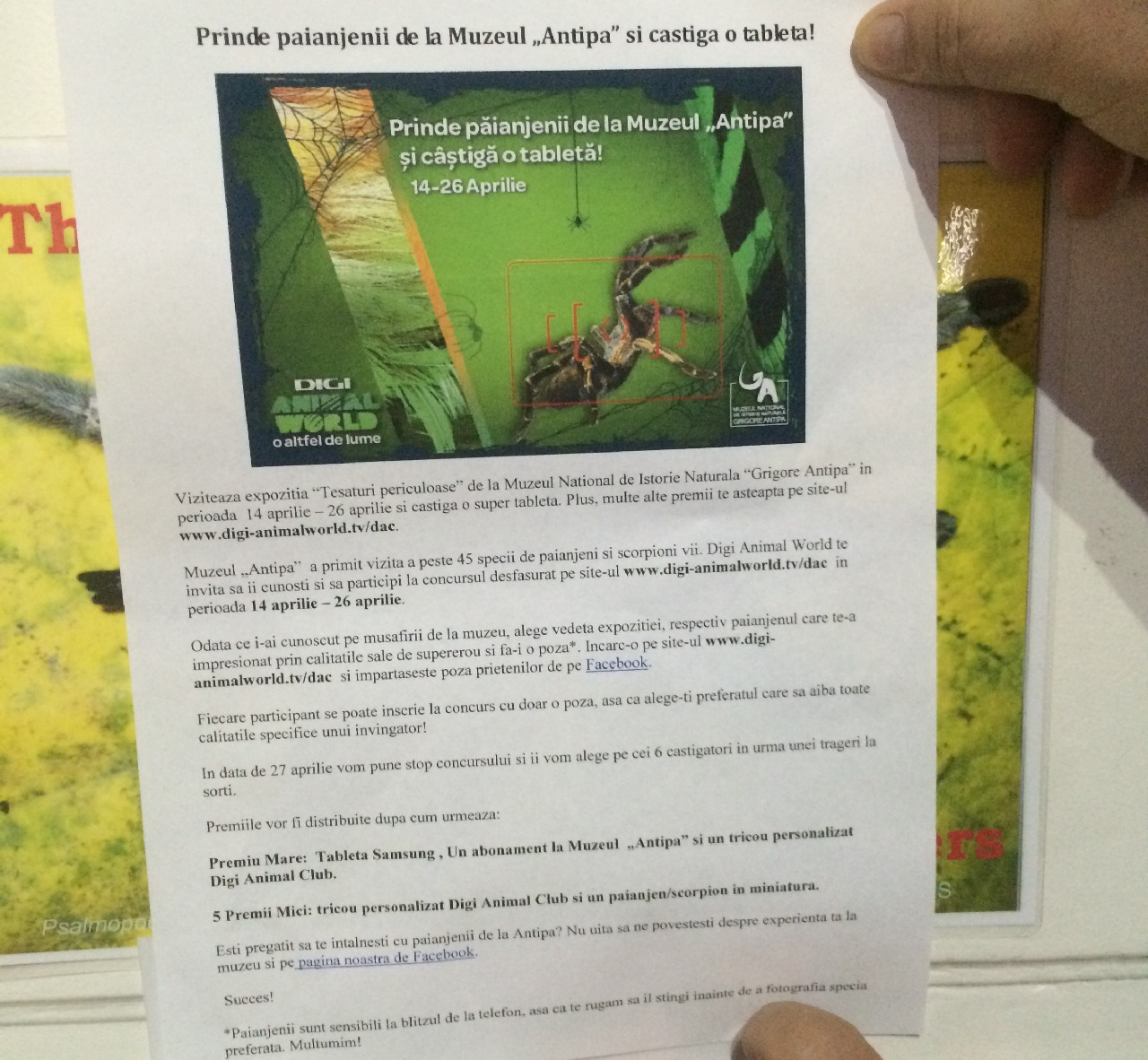 Detaliile concursului Digi Animal Club