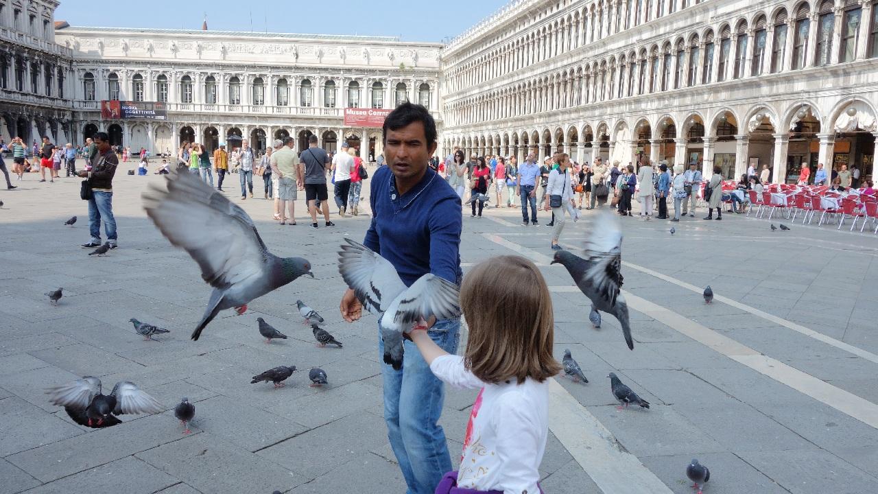 Bucurie de copil, hranind porumbeii in Piata San Marco