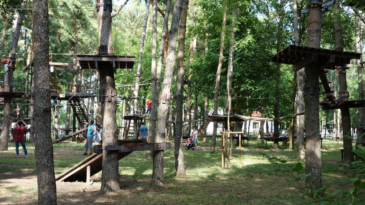 Trasee Parcul de Aventura Comana