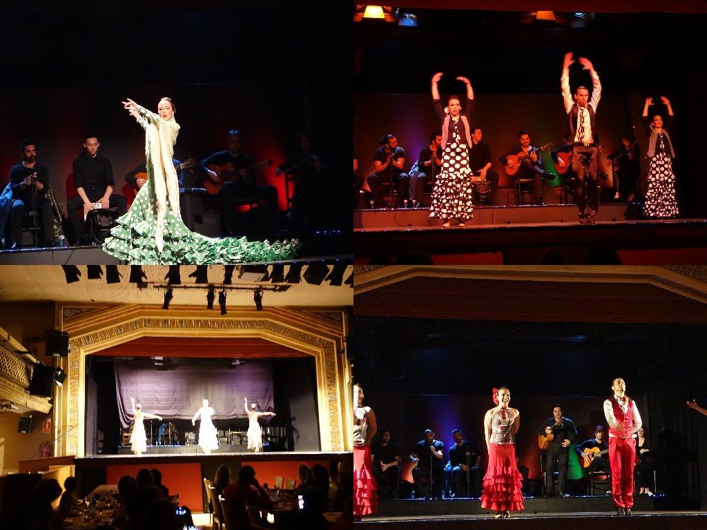 Show-ul de la Palacio del Flamenco