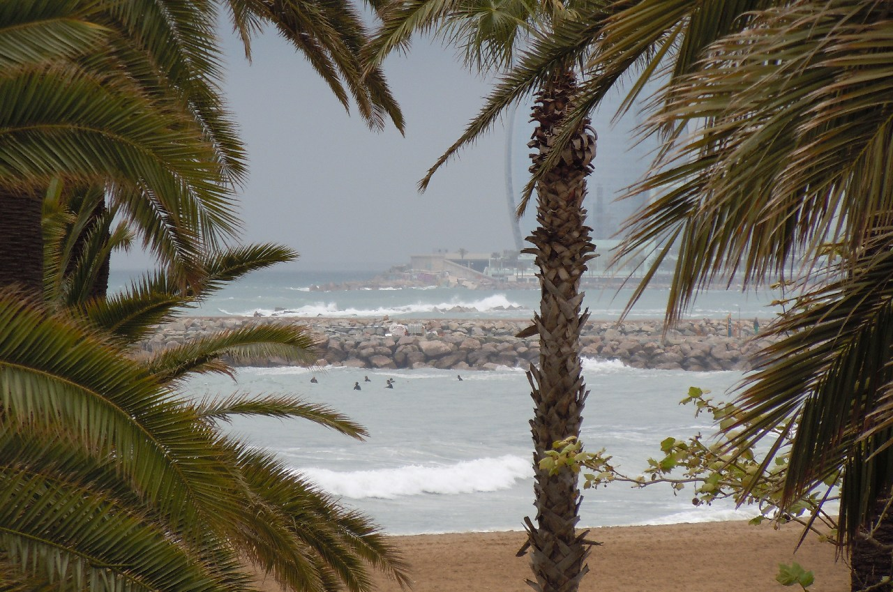 Surfing la Barcelona