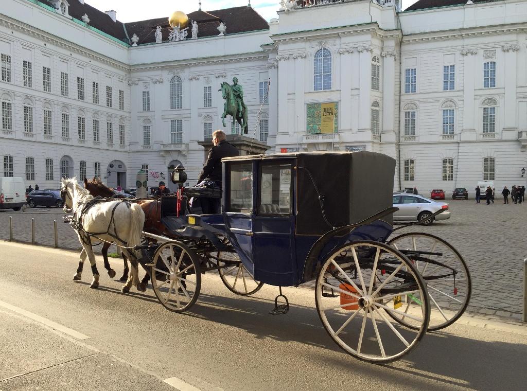 Surprinzatoarea Viena!